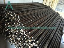 Чорныя бамбукавыя палякі