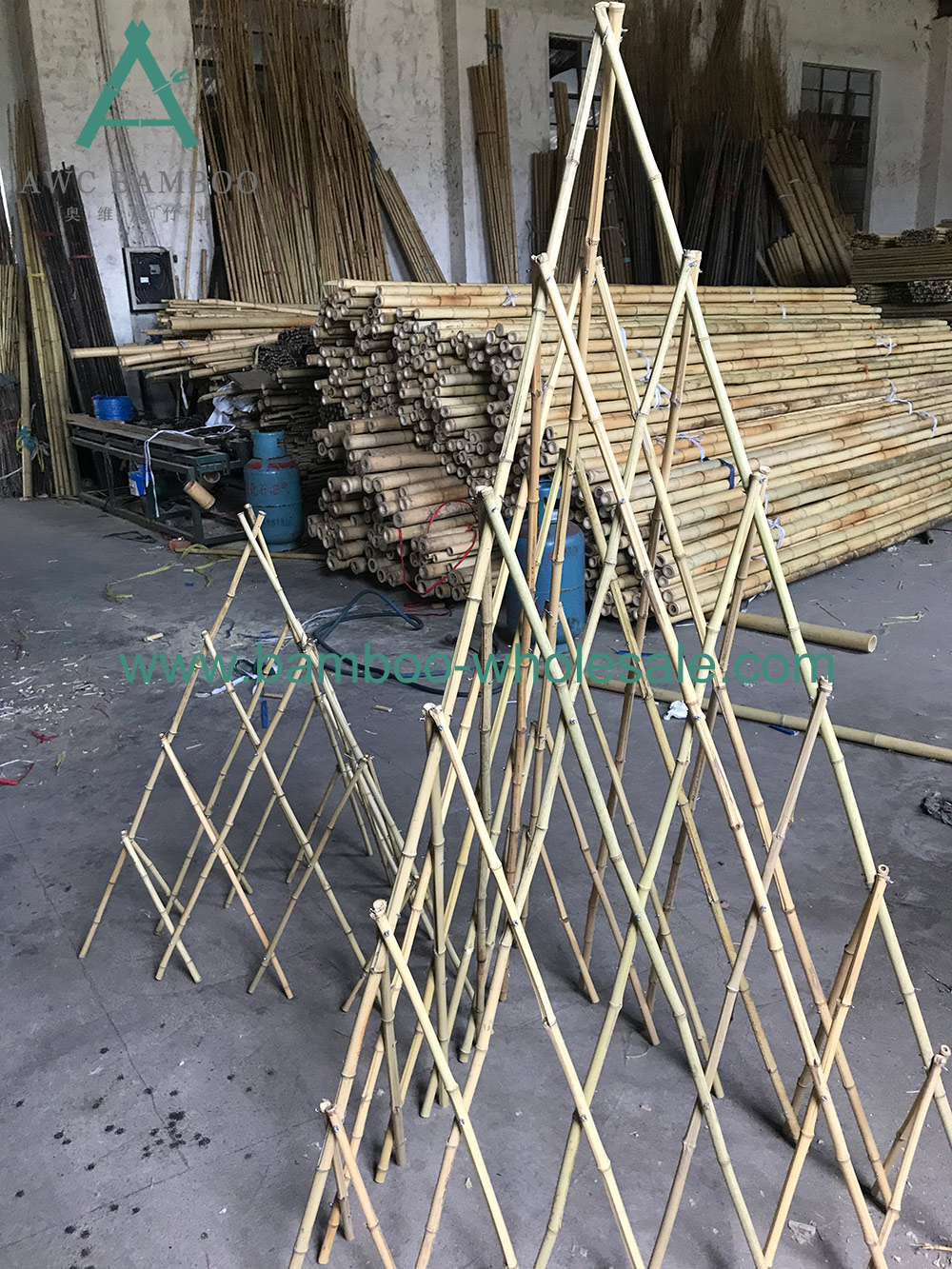 Bambù cù trellis